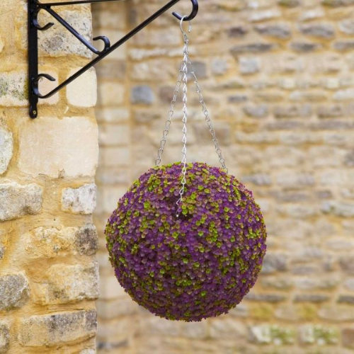 Purple Clover Ball (30cm)
